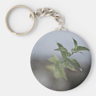 Dew glistens on leaves basic round button keychain