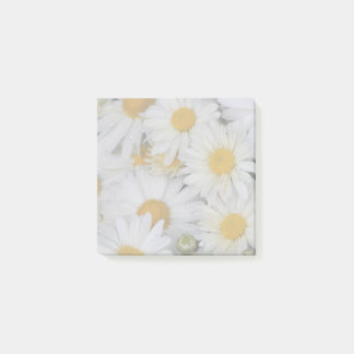 Dew-Kissed Daisies Floral Post-it Notes
