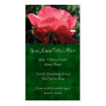 Dew Kissed Rose Business Card Template