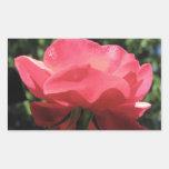 Dew Kissed Rose Rectangular Stickers