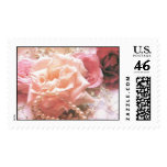 Dew Kissed Roses, Lace & Pearls Postage Stamps