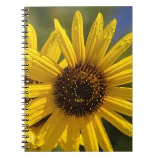Dew Notebook