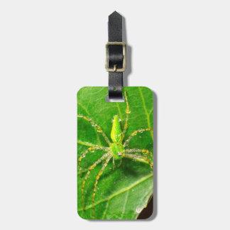 Dew on a Green Lynx Spider Luggage Tag