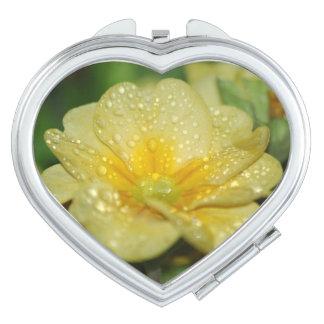 Dew on a Primrose Compact Mirror