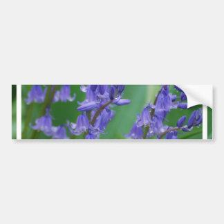 Dew on Bell Flowers Bumper Sticker