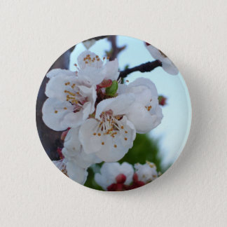 Dew On Blossom Pinback Button