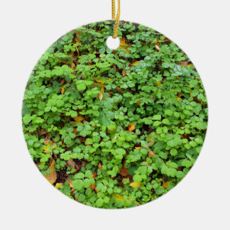 Dew on green plants that grow from the fallen yell Double-Sided ceramic round christmas ornament