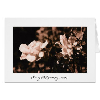 Dew on Roses Card