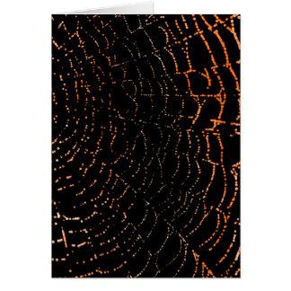 Dew On Shiny Web Orange On Black Background Design Card
