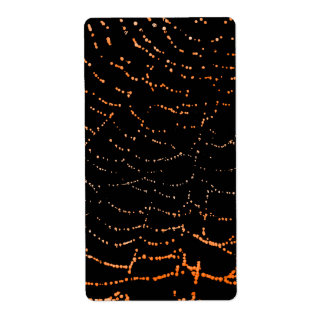 Dew On Shiny Web Orange On Black Background Design Label