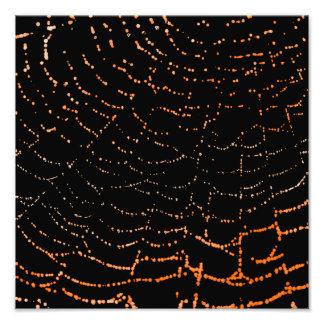 Dew On Shiny Web Orange On Black Background Design Photo