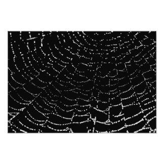 Dew On Shiny Web Silver On Black Background Design Photograph