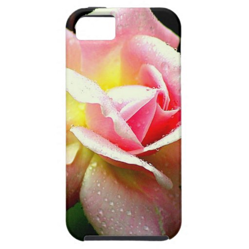 Dew on The Rose Pink Flower Photo Design iPhone 5 Cases