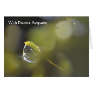 Dewdrop on moss sympathy message card