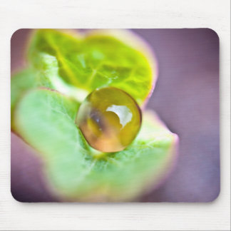 dewdrops mouse pad