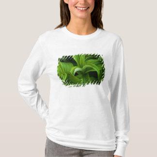 Dewdrops on a False Helabore T-Shirt