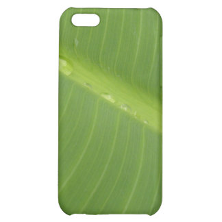 Dewey Banana Leaf 1 Cover For iPhone 5C