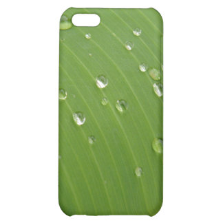 Dewey Banana Leaf 3 Cover For iPhone 5C