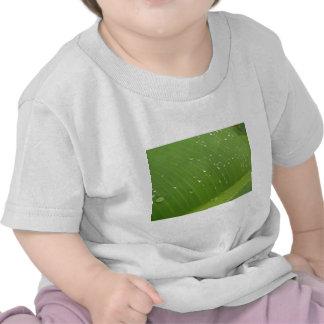 Dewey Banana Leaf 3 Tshirts
