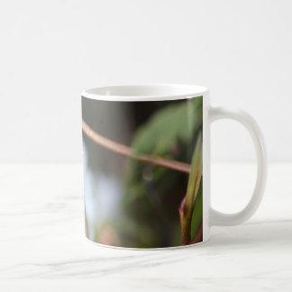 Dewey daisies mug