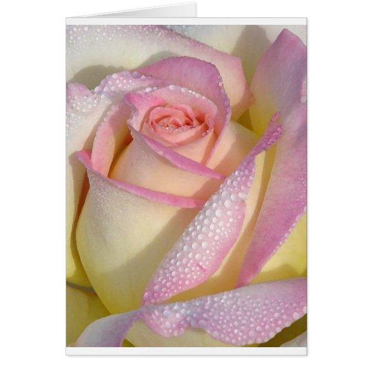 Dewey Rose Note Card
