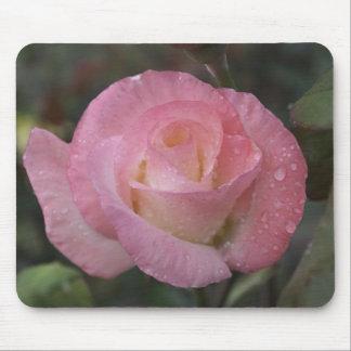 Dewy Pink Rosebud Mouse Pad