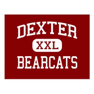 Dexter - Bearcats - High School - Dexter Missouri Postcard