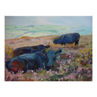 Dexter Cows on Dartmoor Acrylic Painting Poster
