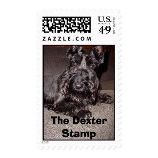 Dexter mi escocés, el sello de Dexter