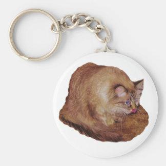 Dezi's Kitty Raspberry keychain