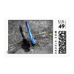 df2 stamp