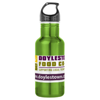 DFC STAINLESS STEEL WATER BOTTLE