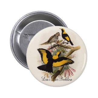 DG Elliott - melinus de Sericulus - Glorieta-pájar Pins