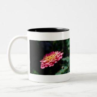Dhalia Flower single Bloom Two-Tone Coffee Mug
