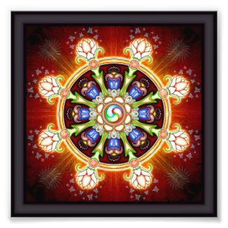 Dharma - rueda cojinete