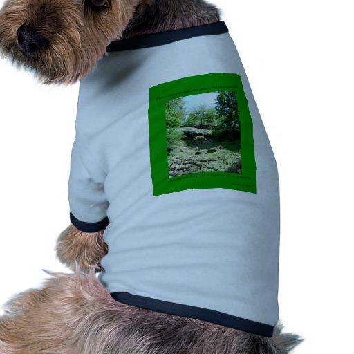 DHCA0006.pdf Camisas De Perritos