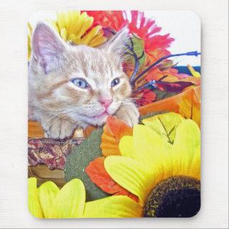Di Milo, gatito del gato del gatito, colores de la Tapetes De Raton