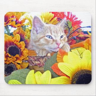 Di Milo, gatito del gato del gatito, colores de la Tapetes De Ratón