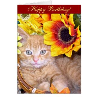 Di Milo, gatito del gato del gatito, flores en luz Tarjeta De Felicitación