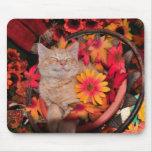 Di Milo, gatito sonriente del gato del gatito, flo Tapete De Ratón