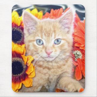 Di Milo, gato del gatito del Tabby del bebé, flore Tapetes De Raton
