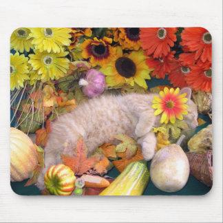 Di Milo, gato lindo del gatito del Tabby, flores d Tapete De Ratón