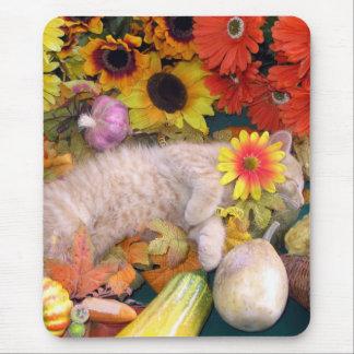 Di Milo, gato lindo del gatito del Tabby, flores Tapetes De Raton