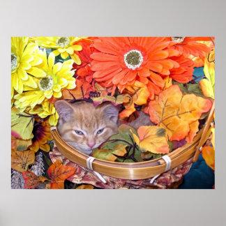 Di Milo, gato soñoliento del gatito, colores de la Posters