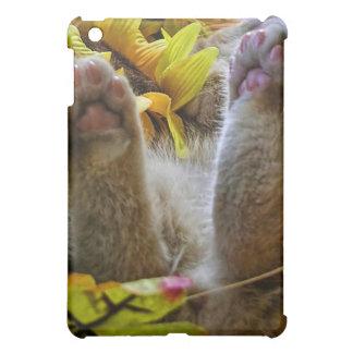 Di Milo Napping, Cute Kitty Cat Kitten's Hind Legs Case For The iPad Mini