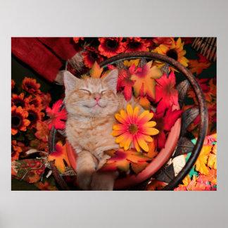 Di Milo, sonrisa del gato del gatito del Tabby del Poster