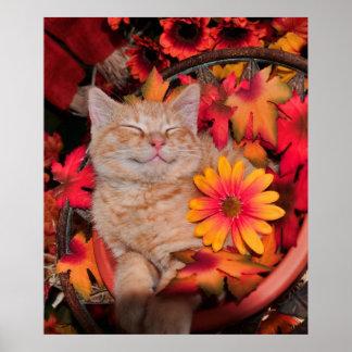 Di Milo, sonrisa del gato del gatito del Tabby del Impresiones