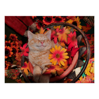 Di Milo, sonrisa del gato del gatito del Tabby del Póster