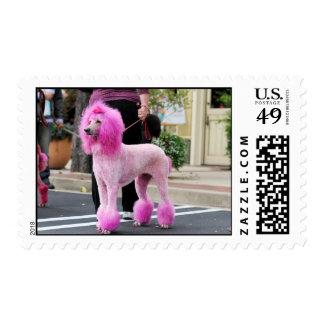 Día 2010 #11 del caniche timbres postales