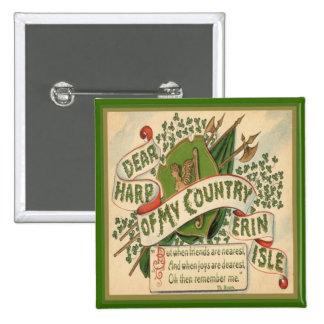 Día 32 del St Patricks del vintage Pin